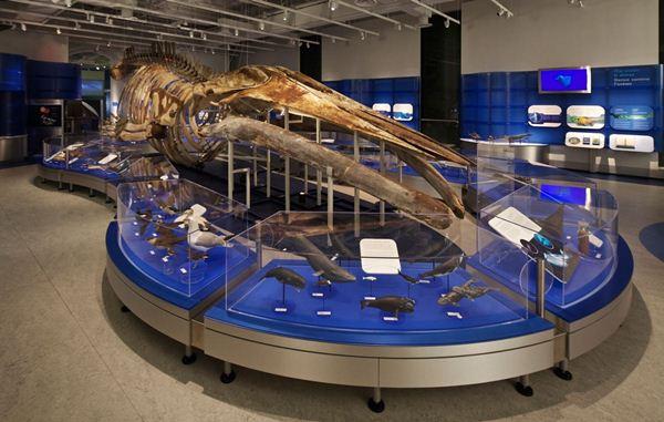 موزه علم