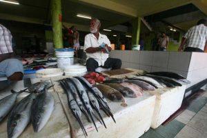 بازار ماهی مالدیو قوی سیاه